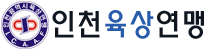 ICAAF : 인천육상연맹